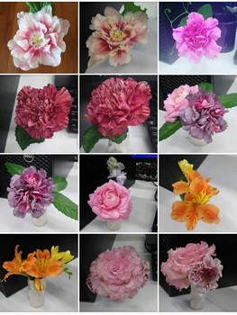 flowers2017jan-feb1.jpg