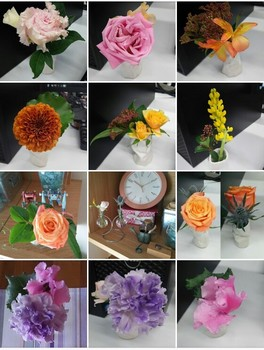 flowers2017jan-feb2.jpg