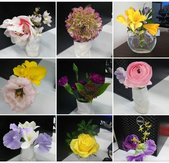 flowers2017jan-feb3.jpg